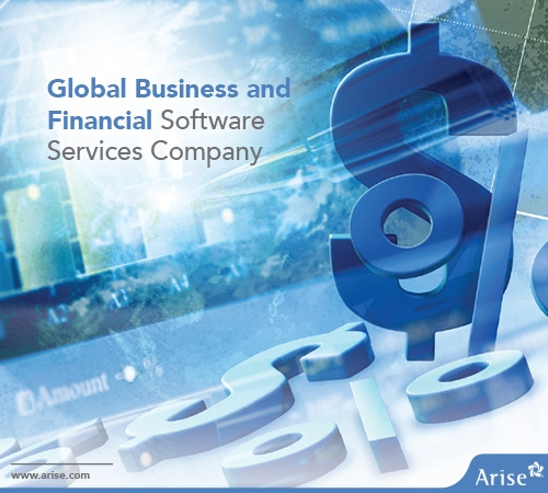 Global Business and Financial Software Services Company